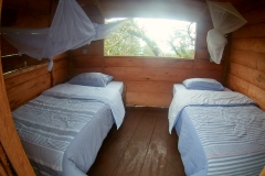Room in canopy!