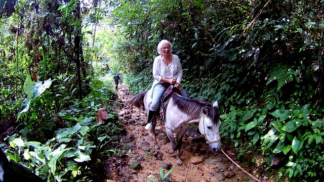 On horseback to the lodge