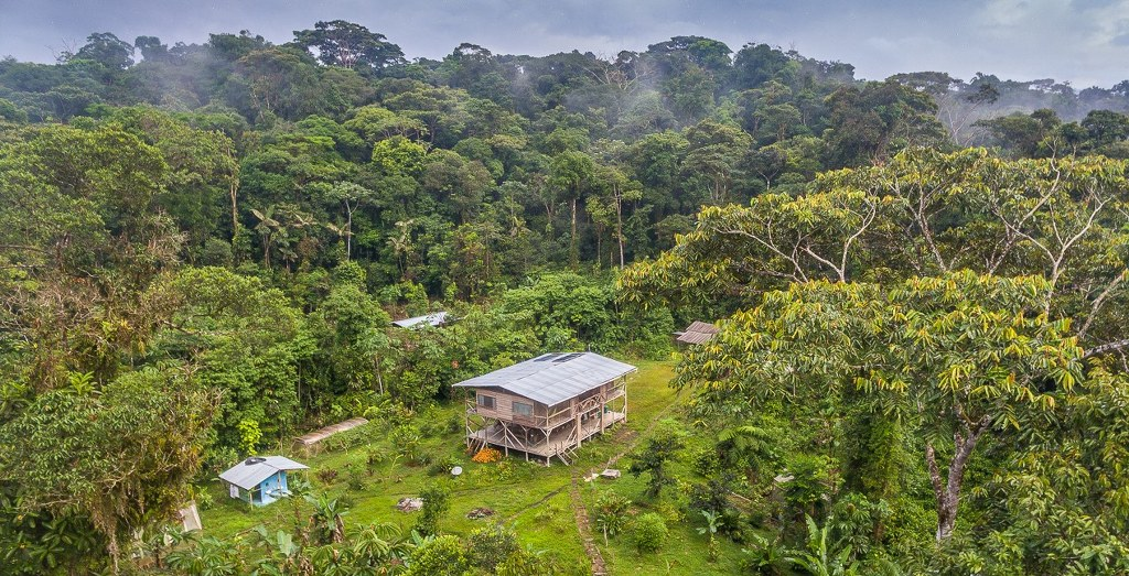 Amazonian ecolodge in primary forest